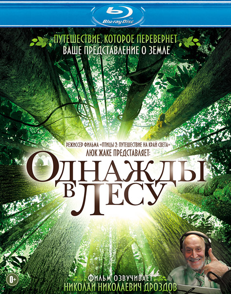 Однажды в лесу / Once Upon a Forest / Il etait une foret (2013) BDRip 720p, 1080p