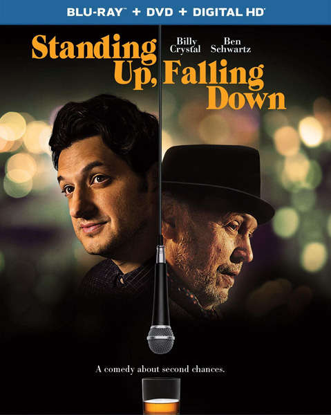 Стендапер по жизни / Standing Up, Falling Down (2019) BDRip 1080p, BD-Remux